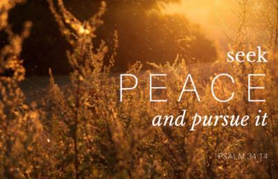 seek-peace.png